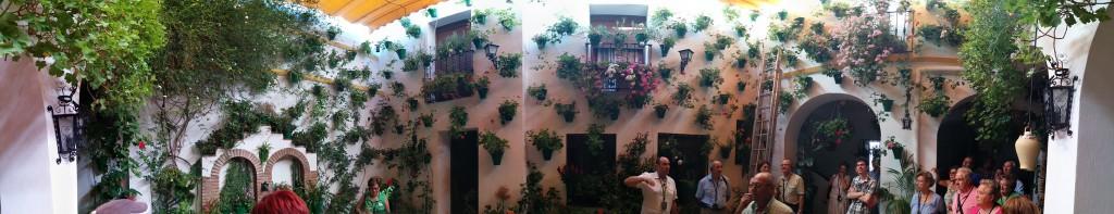 Vista panóramica de uno de los patios de San Basilio